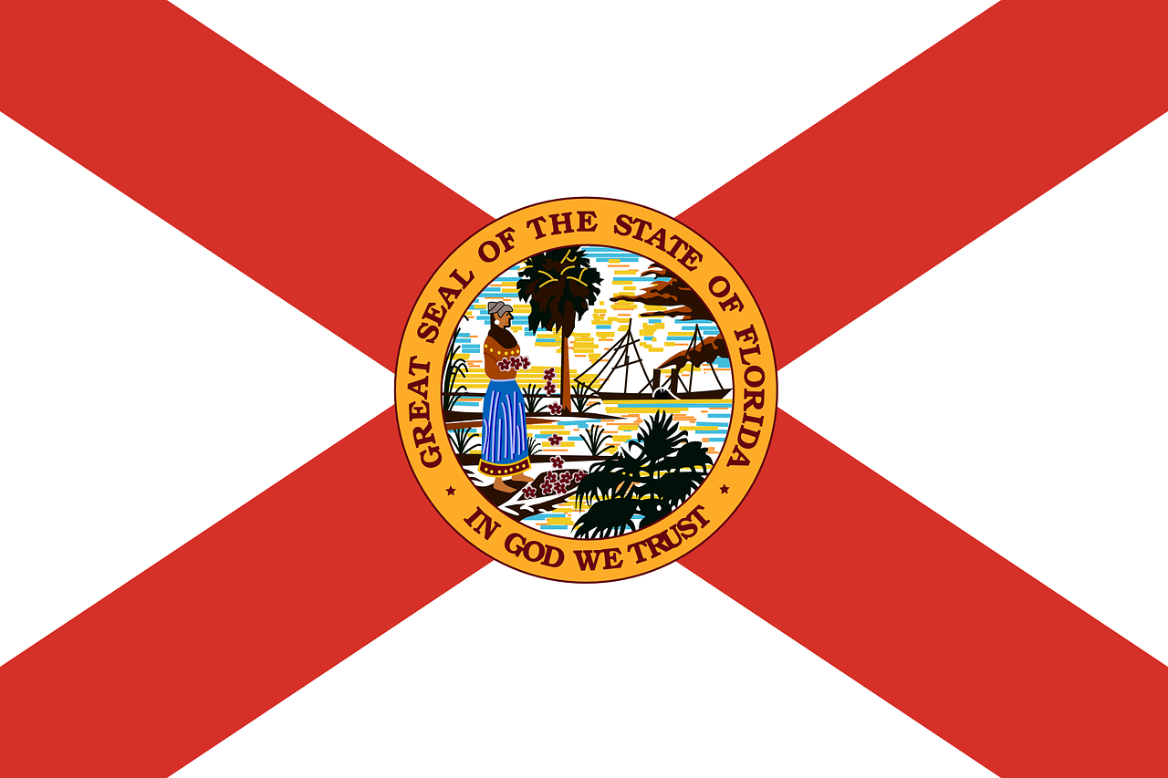 british rule in florida British rule in florida -  soon after the attack the american revolutionary war was almost about to happen some loyalists remained wellloyal to the british during that time period.