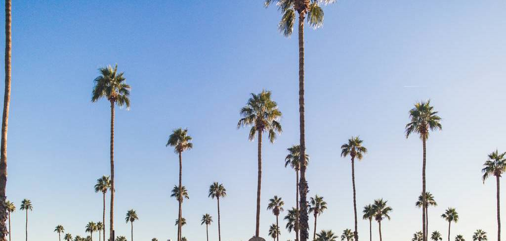 Coachella and Stagecoach 2019 | Uber Blog